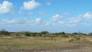 Cape-Valero-Birding-1