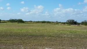 Cape-Valero-Birding-8