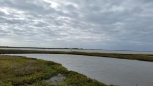 Egery-Flats-Birding-6
