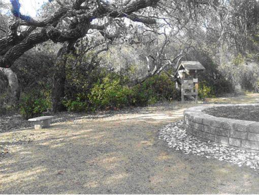 Shellcrete Birding site