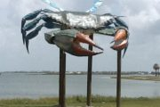 Rockport Big Blue Crab