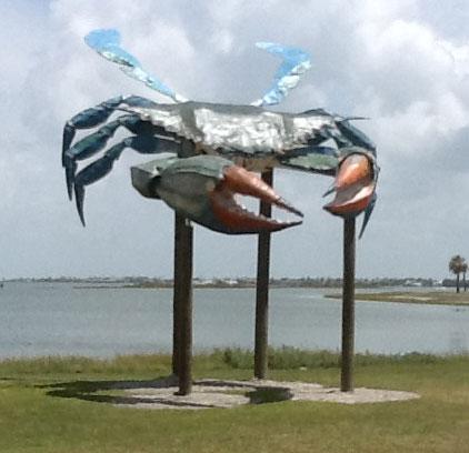 Rockport Big Blue Crab