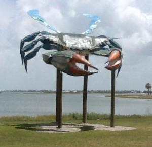 big-blue-crab-21